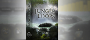 Jungle loops main image pluginboutique