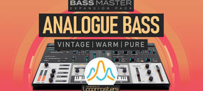 1200 x 600 lm bassmaster analogue bass pluginboutique