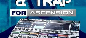 W.a. production dubstep trap for ascension artwork pluginboutique %281%29
