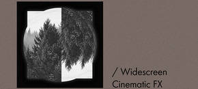 Widescreen cinematic fx nl pluginboutique